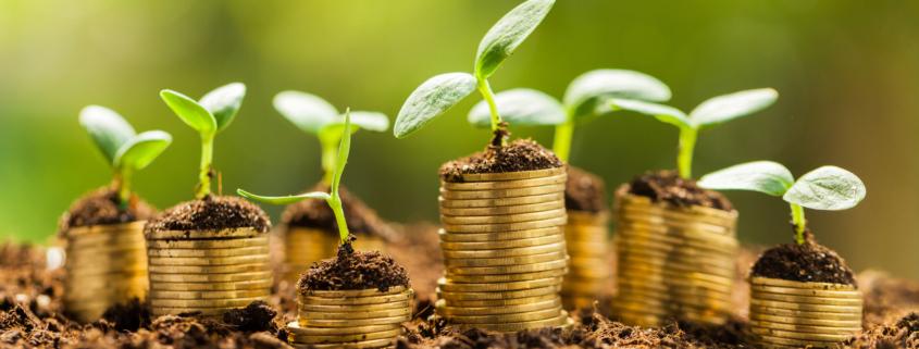 voordelen duurzaam voor de belasting